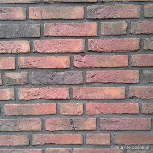 Eurosteen Rolduc Handvorm Waalformaat (4021)