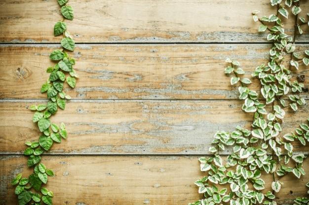 De duurzaamheidsklasse van hout